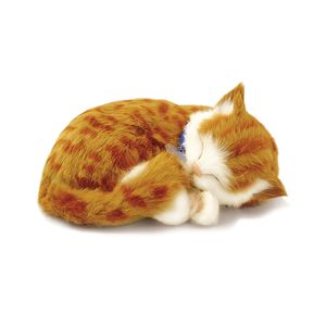 PERFECT-PET-PELUCIA-GATO-ORANGE-TABBY