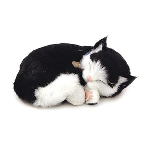 PERFECT-PET-PELUCIA-GATO-PRETO-E-BRANCO