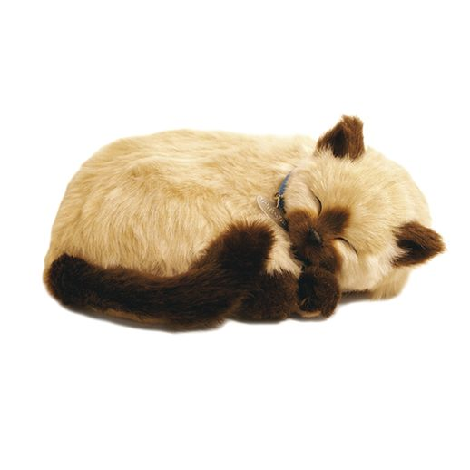 PERFECT-PET-PELUCIA-GATO-TAN-SIAMES