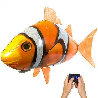 peixe-palhaco-1