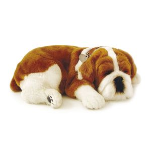 PERFECT-PET-PELUCIA-CACHORRO-BULDOG