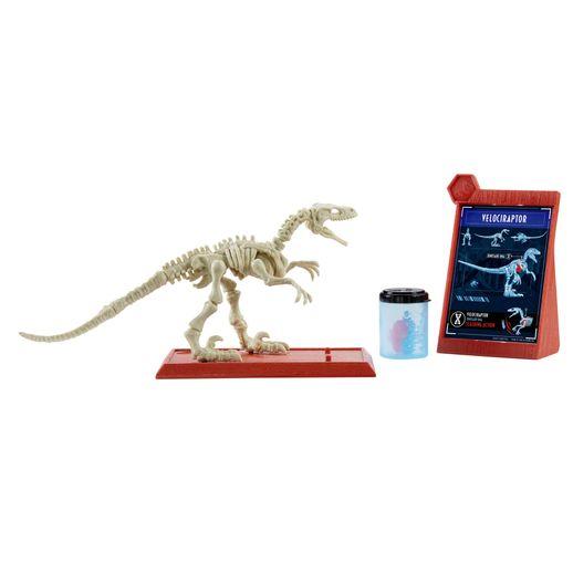 Jurassic-World-Esqueletos-Jurassicos-Velociraptor---Mattel